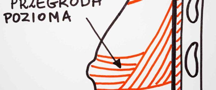 Czy plecy mogą boleć od piersi? Budowa piersi. Pierś podtrzymywana jest przez aparat więzadłowy składający się z drobnych więzadeł Coopera, oraz z dużej przegrody poziomej podtrzymywanej po bokach przez duże więzadła. Struktury te przyczepiają się do powięzi piersiowej pokrywającej mięsień piersiowy większy.