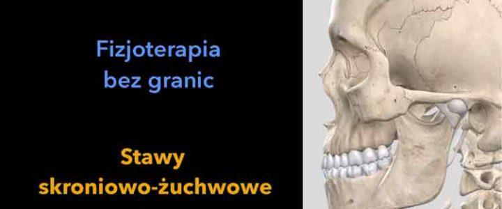 Stawy skroniowo żuchwowe Jeżeli odczówasz ból w okolicy stawów, koniecznie zapoznaj się z tym materiałem. joannatokarska.pl